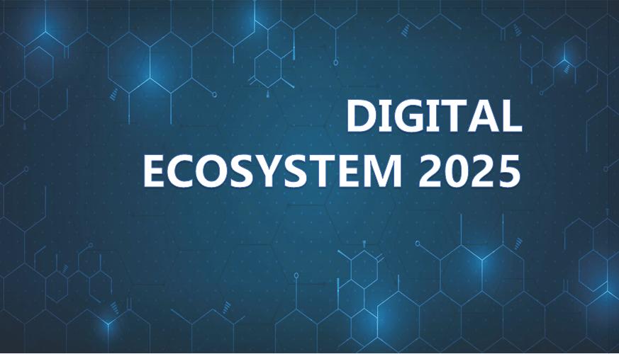 Digital ecosystem 2025